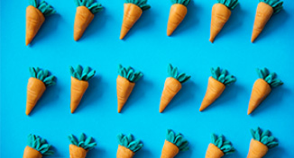 Image of Rows of carrots